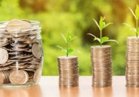 Lay A Strong Investment Foundation Through A Stock Market Investing Guide